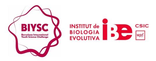 logo BIYSC IBE