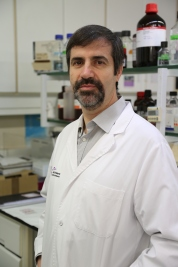 Virus Zika Hepatitis Josep Quer VHIR