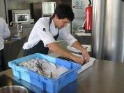 Ciència After Work a la Pedrera _Sardina en xarxa_1