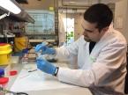 Instructive biomaterials for regenerative medicine (IBEC, BIYSC 2017)