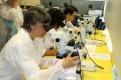13a edició Professors i ciència_ Fundació Catalunya La Pedrera